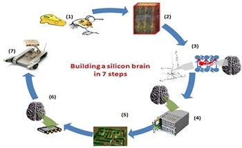 An Introduction to Silicon Brains: Dr. Massimiliano Versace