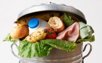 From Farm to Fork: Cutting Down on Food Waste with Machine Learning