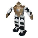 RK-JNT-008 2-leg Walking Robot from Roboblock System Co., Ltd.