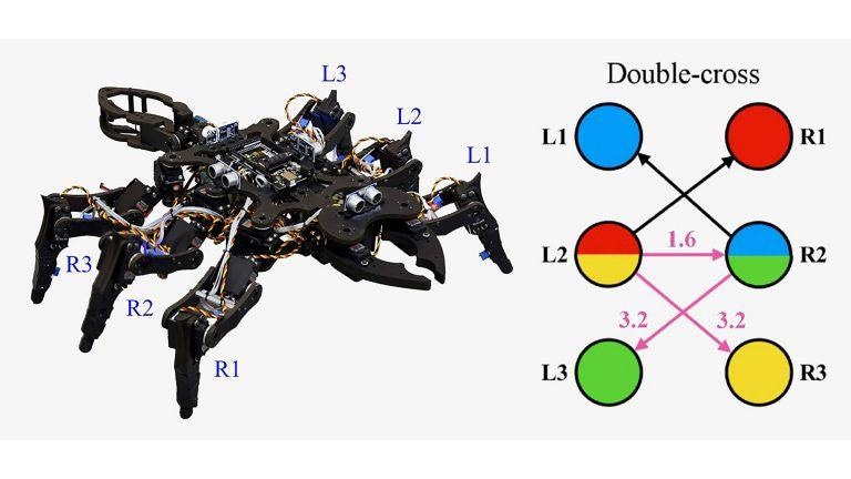 Coupled Rössler Systems Help Generate Insect-Like Gaits for Tiny Robots