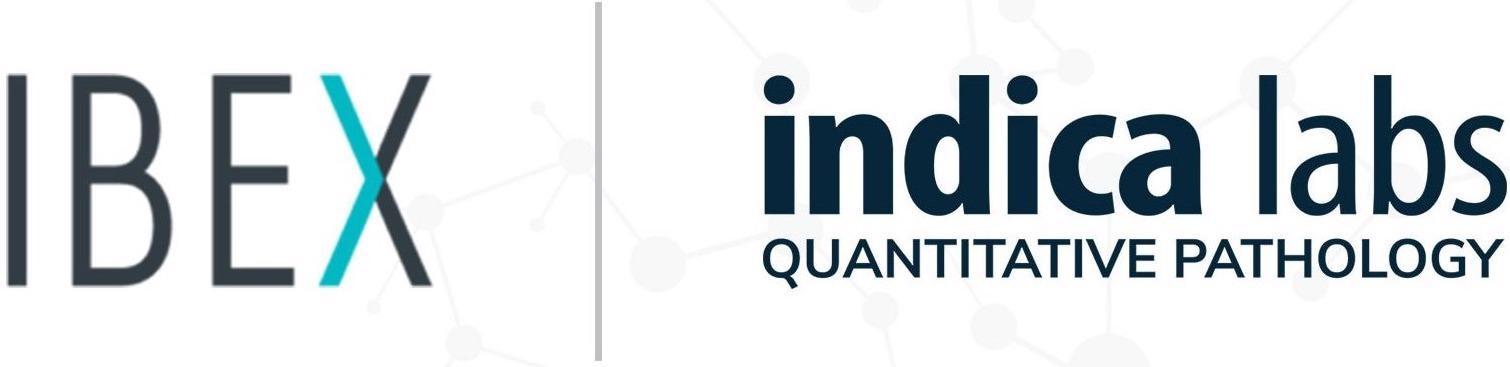 Indema Labs和Ibex合作伙伴提供数字病理学的AI供电的临床工作流程