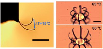 Researchers Develop Robust Microactuators for Micro-Scale Robotics