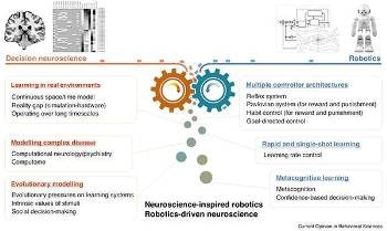 Research on Improving Robot Intelligence via Brain-Inspired Artificial Intelligence