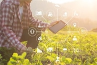 AI and Nanotechnology Could Offer Solution to Global Food Security Challenges