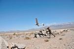 AeroVironment Launches a Series of Enhancements to Puma AE UAS