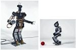 UCLA's Roboticists Create Advanced Humanoid Robots