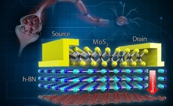 Scientists Develop Brain-Inspired Memory Device for Wearable Electronics